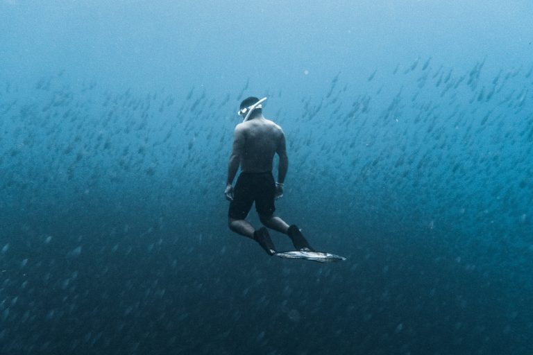 Free Diver (cropped)